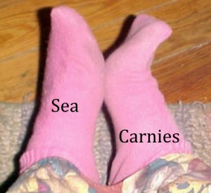 Sea Carnies By Daisy Sidewinder