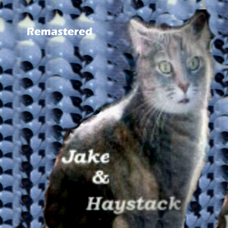 Jake and Haystack